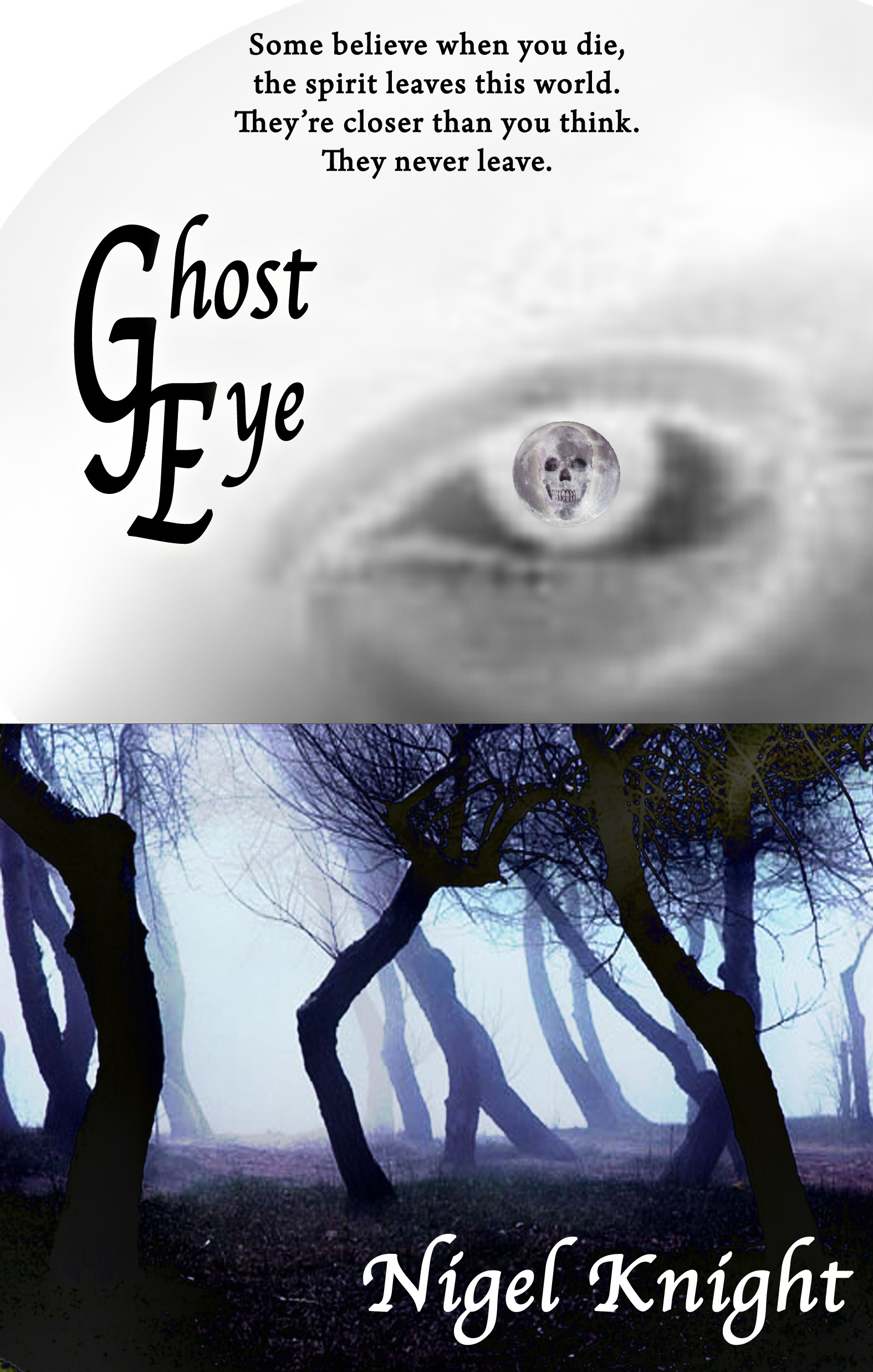 Ghost Eye Book Cover